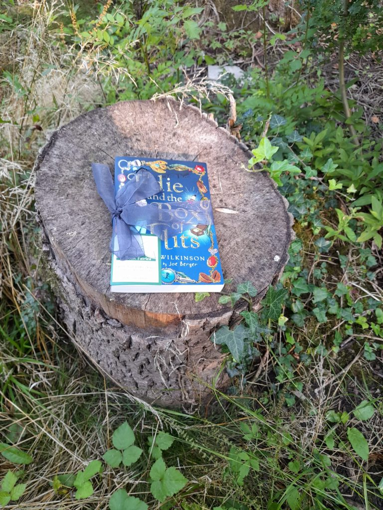 Edie and the Box of Flits hidden by The Book Fairies in Peterborough