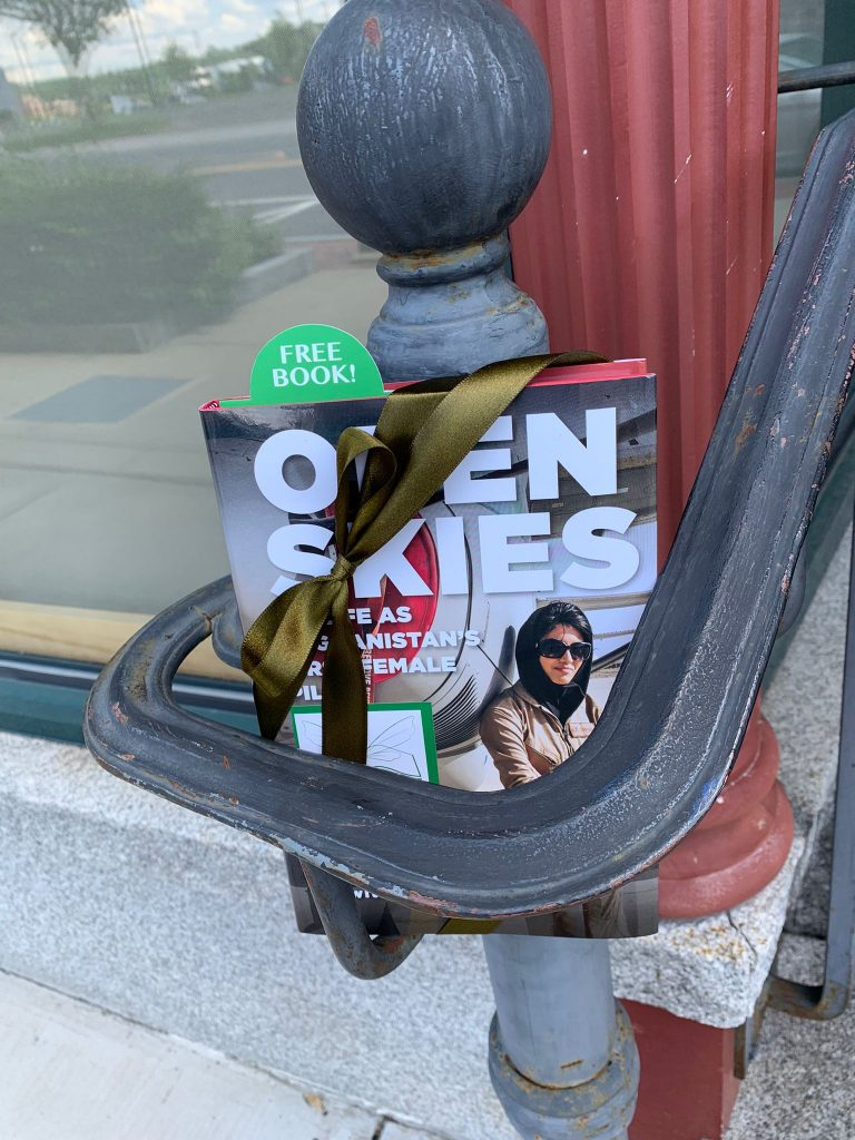 Open Skies by Niloofar Rahmani is hidden by book fairies for a lucky finder