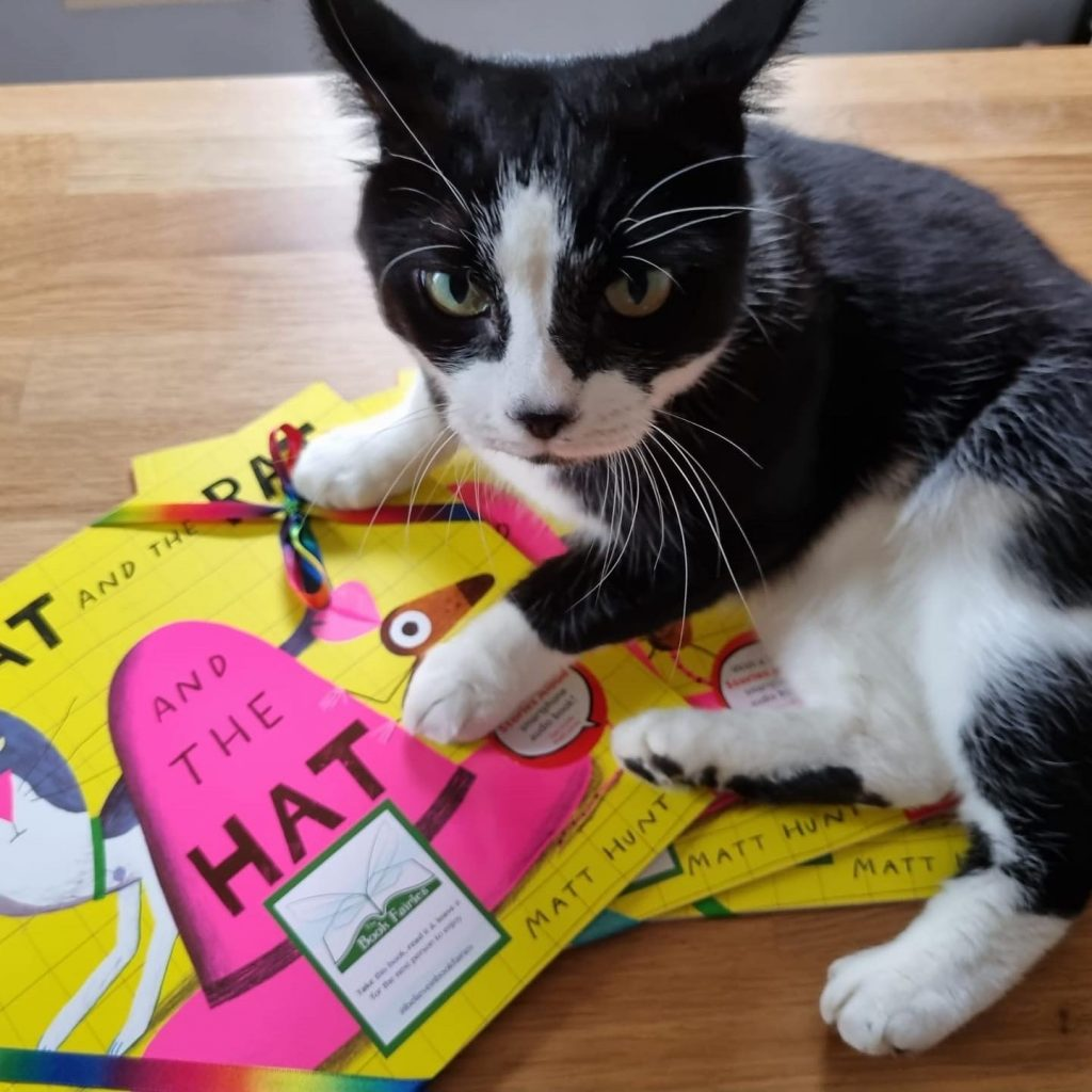 The Cat The Rat And The Hat hidden by book fairies with a black and white cat