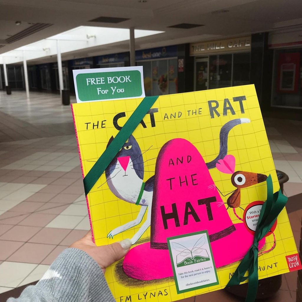 The Cat The Rat And The Hat hidden by book fairies in West Lothian