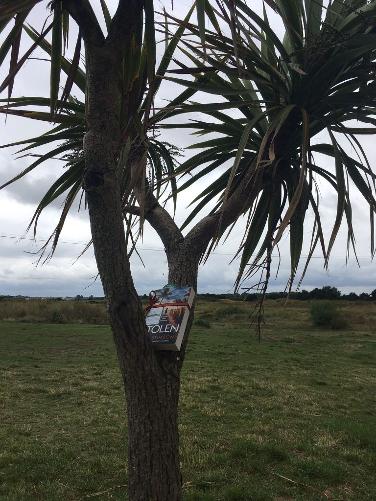 Book Fairies share copies of Stolen by Tess Stimson at the beach