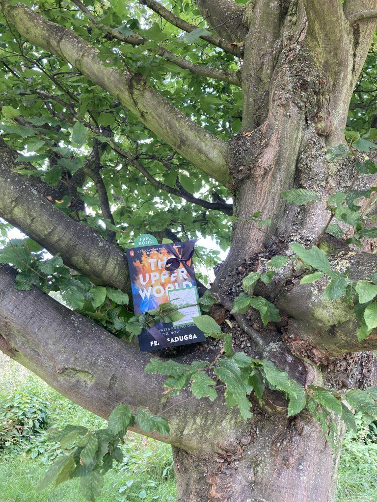 Book Fairies follow the plot of The Upper World by Femi Fatugba in Peckham