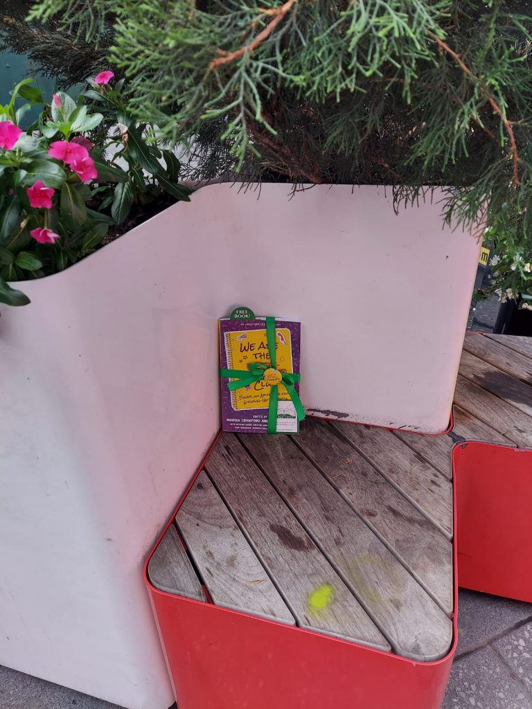 Book Fairies in the US share copies of We Are The Babysitter's Club at Times Square NYC