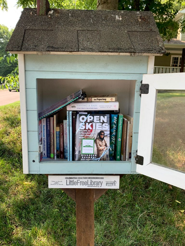 Open Skies by Niloofar Rahmani is hidden by book fairies in a little free library