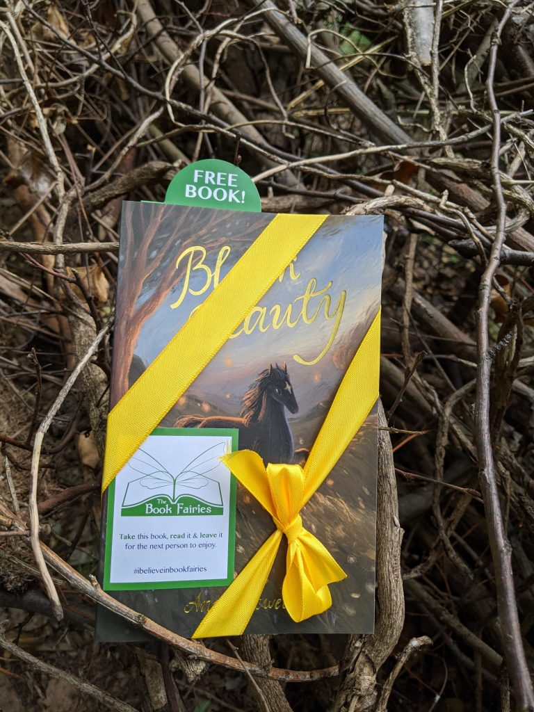 The Book Fairies and Wordsworth Editions share classic literature - Black Beauty