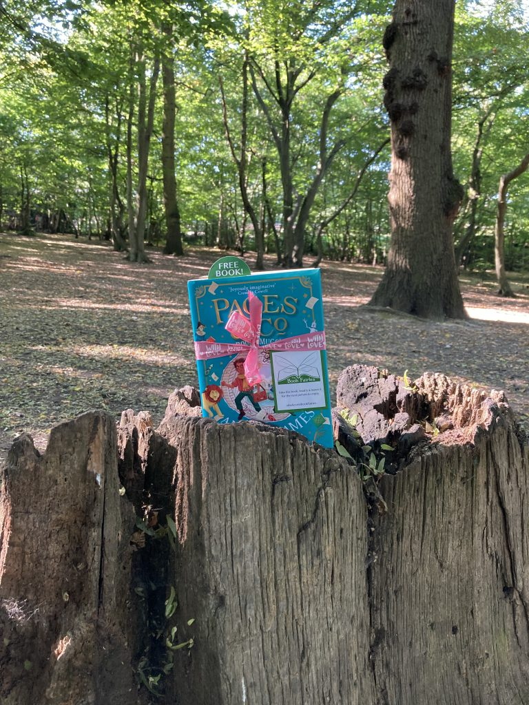 Anna James becomes Book Fairy for a Day with new book Pages and Co: The Book Smugglers - on a tree stump