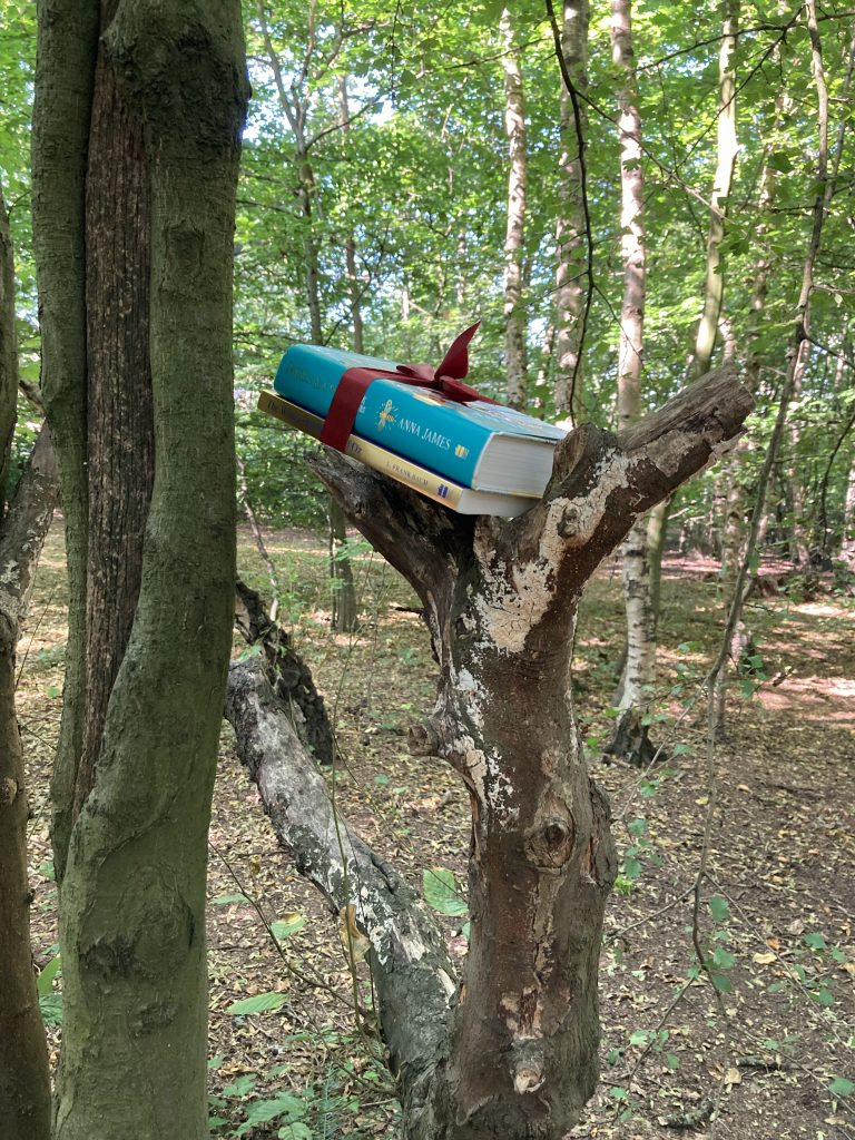 Anna James becomes Book Fairy for a Day with new book Pages and Co: The Book Smugglers - hidden in a tree