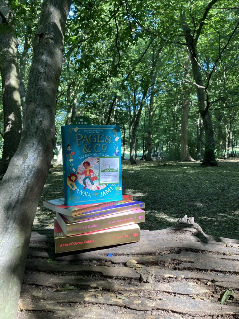 The Book Smugglers by Anna James hidden by The Book Fairies