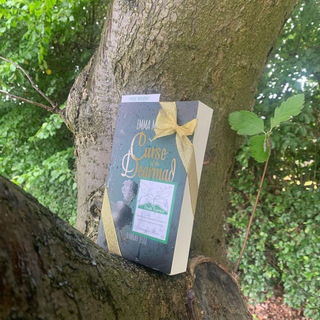 Curse of the Dearmad by debut author Emma Mylrea is shared by The Book Fairies in a tree