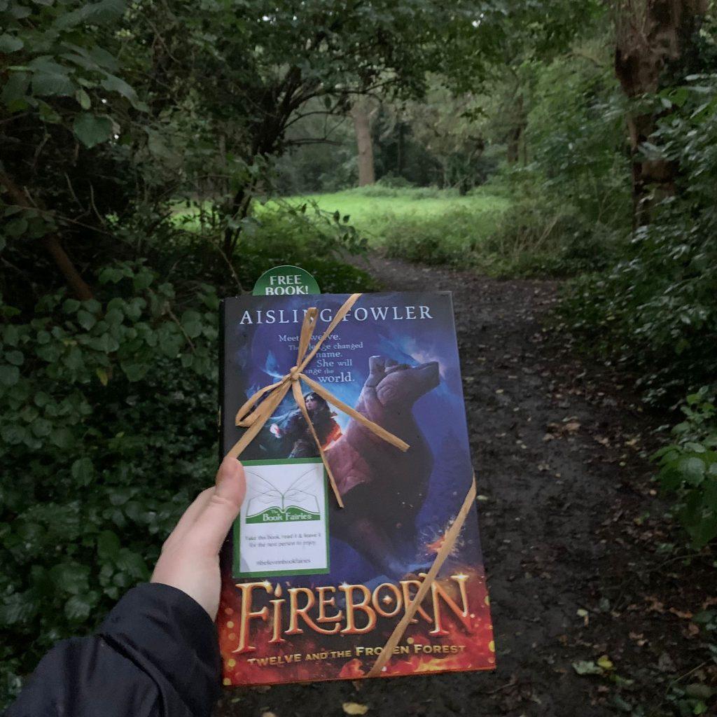 Fireborn by Aisling Fowler hidden by book fairies in Manchester