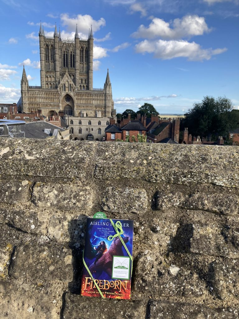 Fireborn by Aisling Fowler hidden by book fairies - Lincoln Cathedral