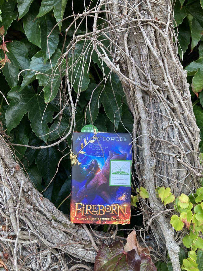 Fireborn by Aisling Fowler hidden by book fairies - ivy