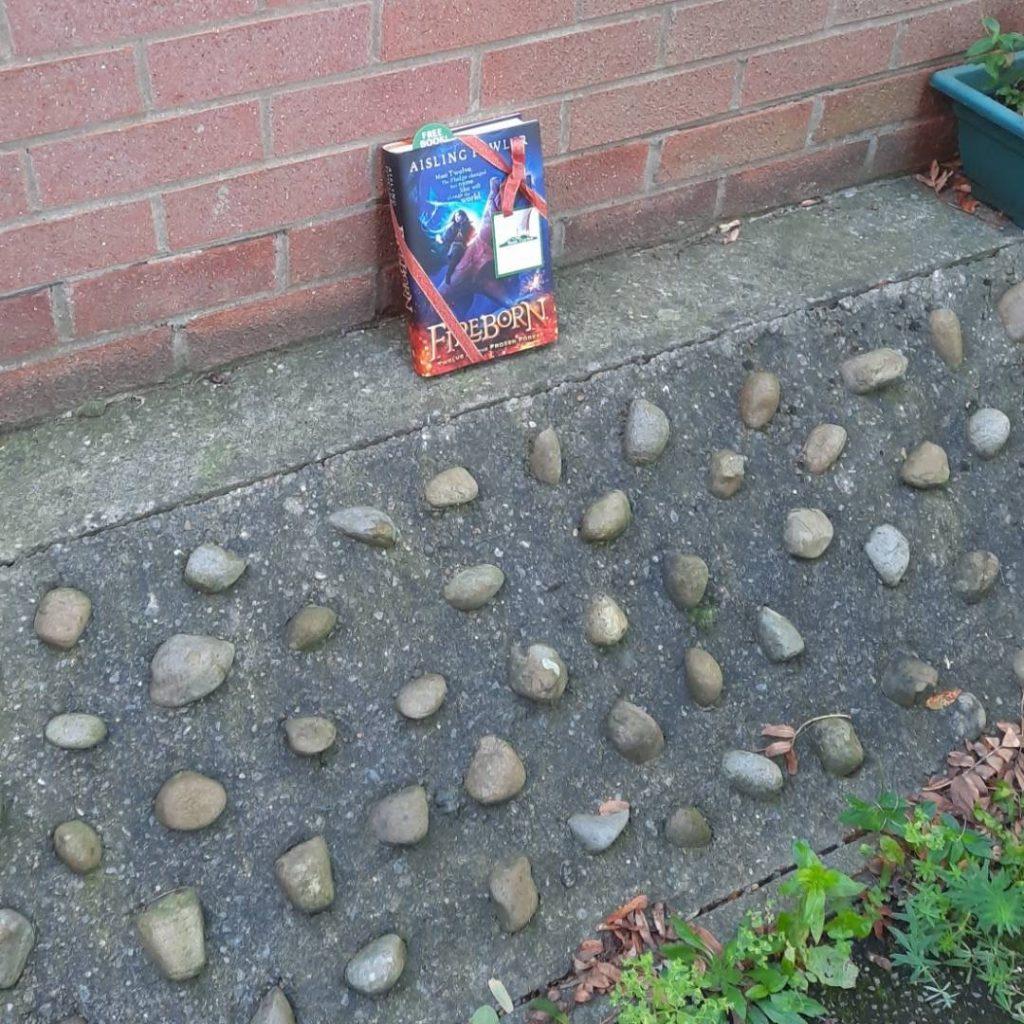 Fireborn by Aisling Fowler hidden by book fairies - outside