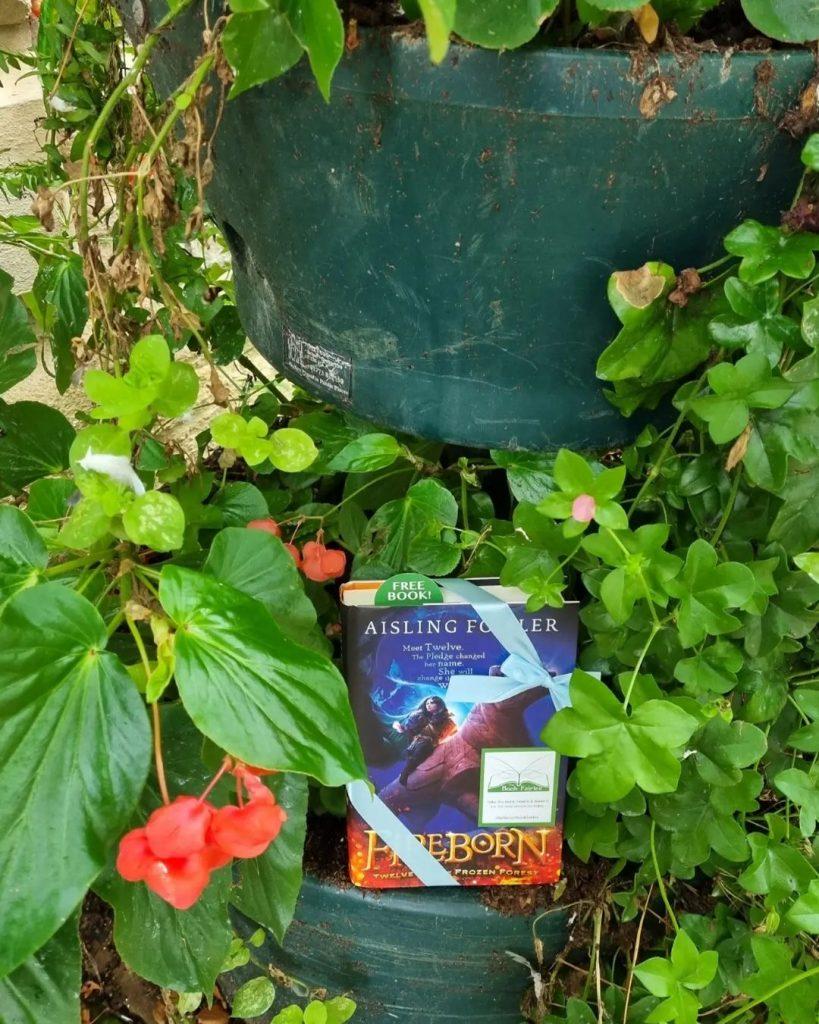 Fireborn by Aisling Fowler hidden by book fairies - Edinburgh