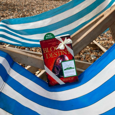 The Book Fairies and Red Door Press hide books around the UK - the beach