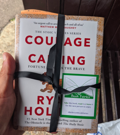 Book found - book fairies courage is calling